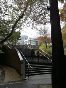丘の上の岡本太郎美術館